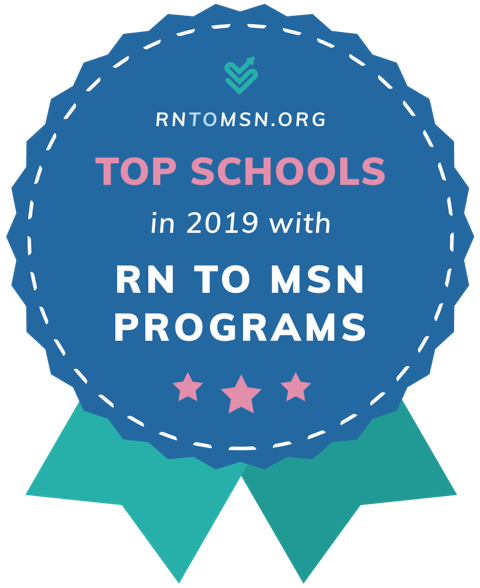 Top Schools in 2019 with RN to MSN Programs