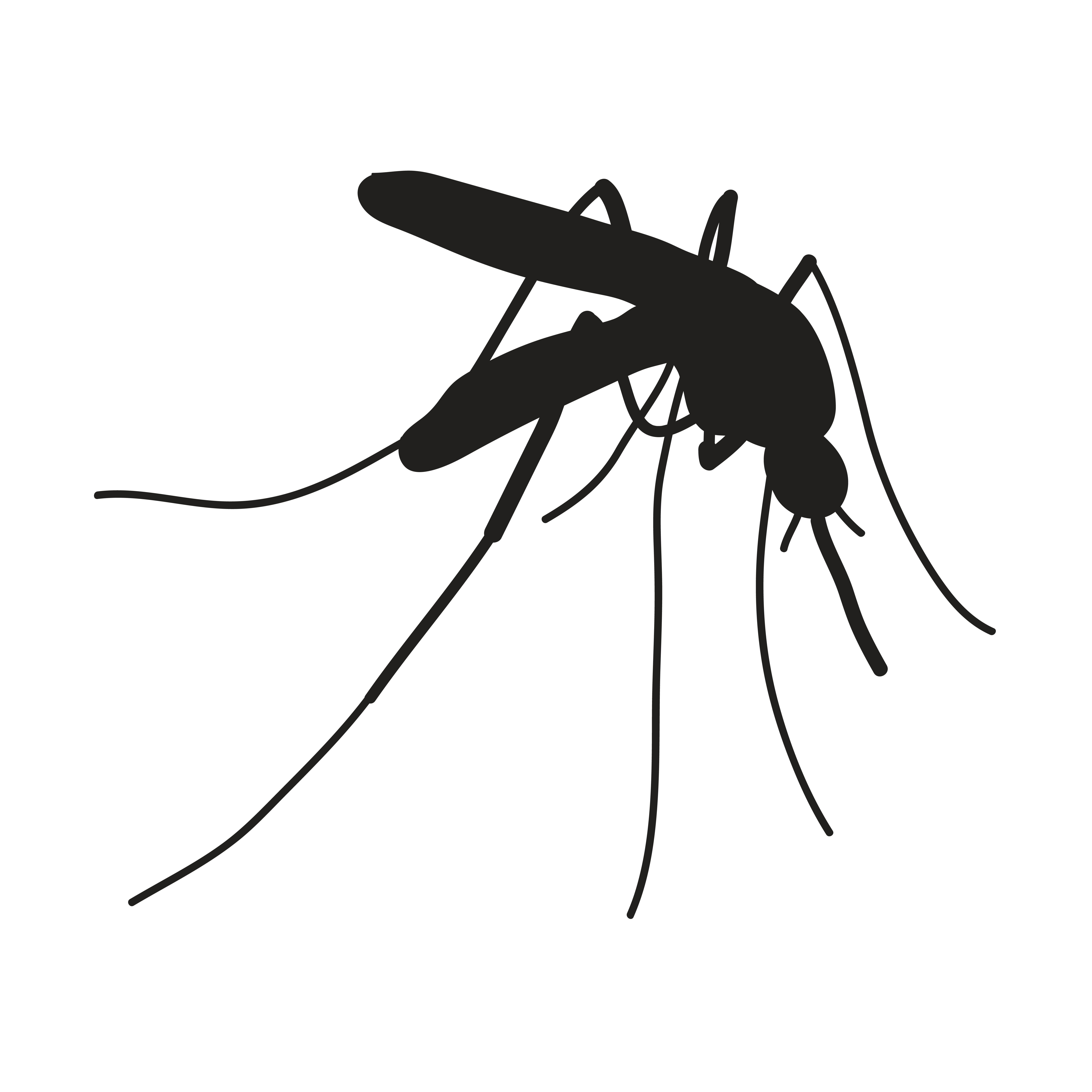 Volunteers Needed for a Universal Mosquito-Borne Disease Vaccine